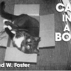 Cat in a Box by Brad W. Foster
