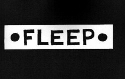 Fleep by Jason Shiga