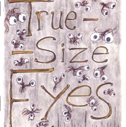 True Size Eyes by Christopher Davis